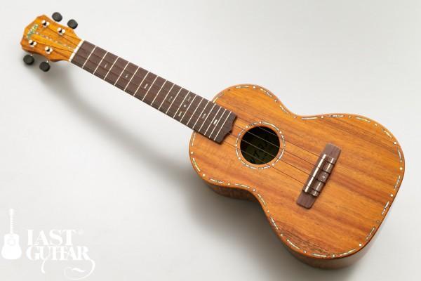 アンタール-コンサート-Koa