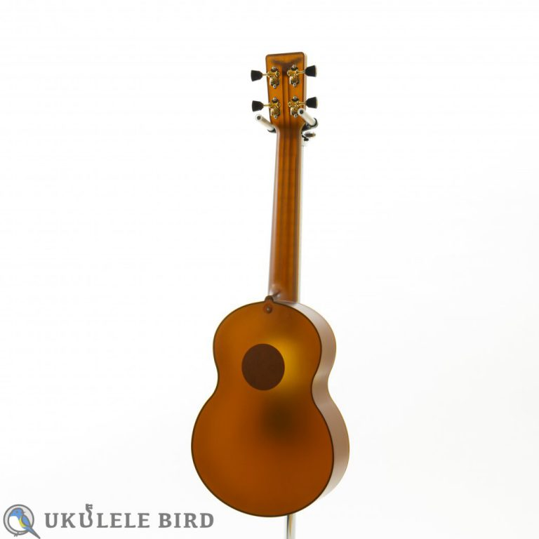 Outdoor Ukulele Tenor Brown Gold