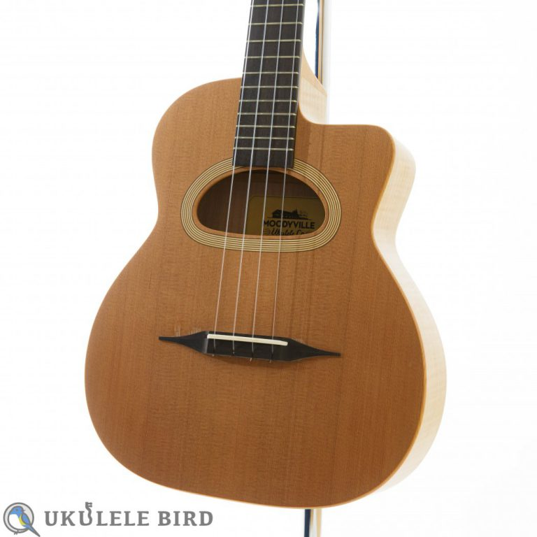 Moodyville Gypsy Tenor UK CedarMaple