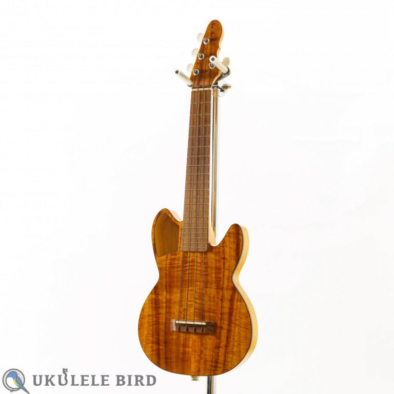 BLUE STRINGS CEH KOA